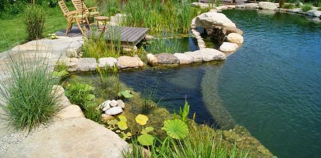 Fotos de piscinas piscina de casas con piedra - Piedras para piscinas ...
