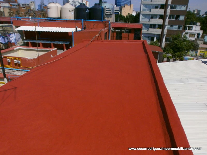 Impermeabilizaci n garantizada de azoteas y techos for Piso acrilico transparente