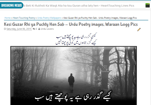 jameel noori nastaleeq font for website, How To Write Urdu in Your Website with stylish fonts, How Can i write Urdu on Blogger, How to istall urdu on the wordpress or blogger