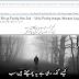 How To Write Urdu in Jameel Nori Fonts On My Website? Urdu Writing On Web