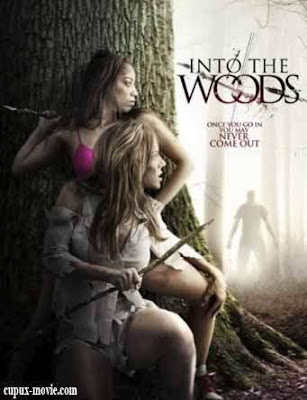 Into The Woods (2012) DVDRip www.cupux-movie.com