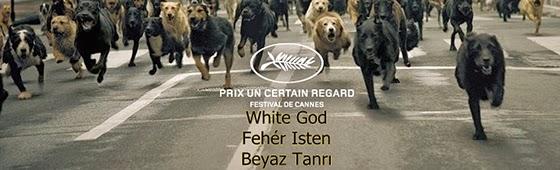 white god-feher isten-beyaz tanri