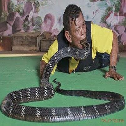 Homem engolindo cobra