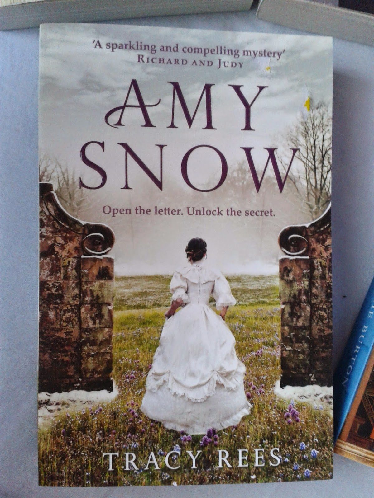 Amy Snow front cover