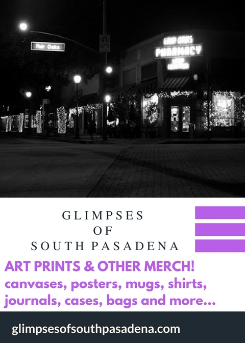 SHOP GLIMPSES MERCH