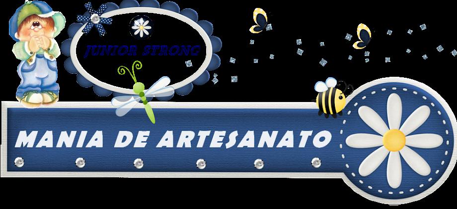 JUNIOR-MANIA DE ARTESATO