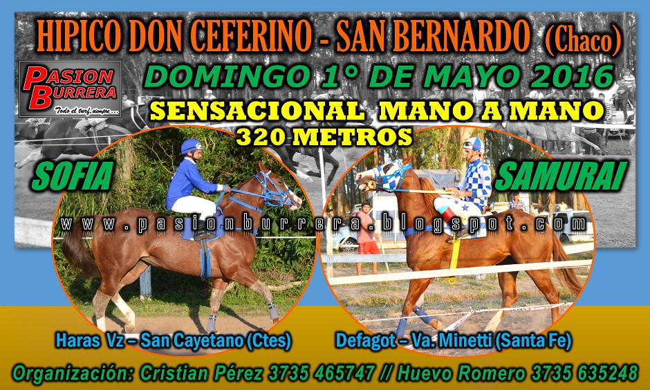 SAN BERNARDO - 1 DE MAYO 2016