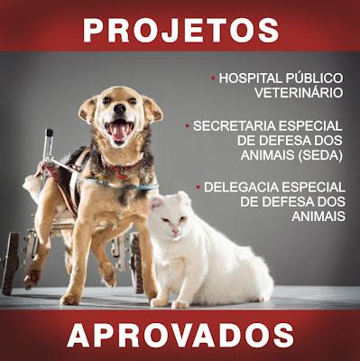 hospital veterinario em Salvador