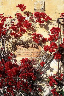 Nancy Medina Art Light Bright Hydrangeas And Sunflowers