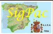 Espainiako ORTOARGAZKIAK