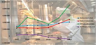 Activitatea Dristor Kebab 2007 2008 2009 2010 2011 2012