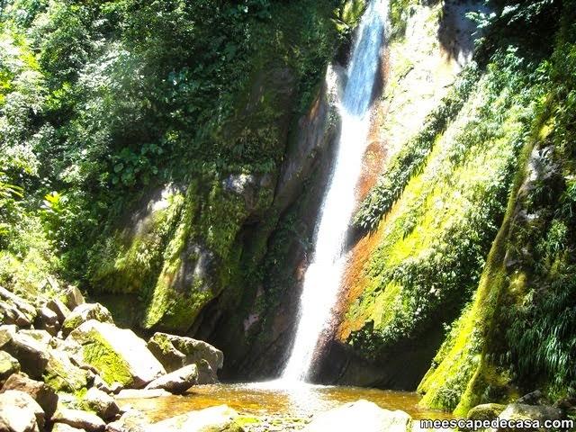 Tamushal, la segunda cascada del río Shilcayo (Cordillera Escalera, San Martín, Perú) 2