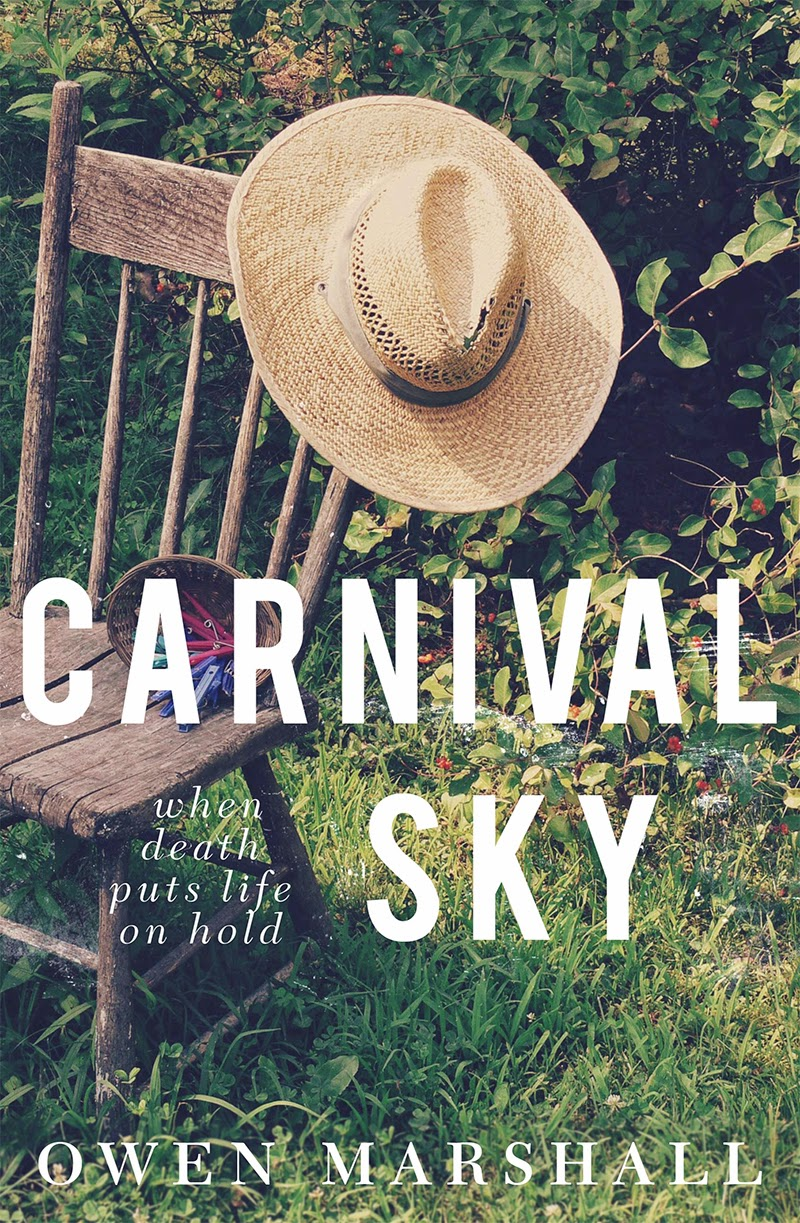 carnival sky cover
