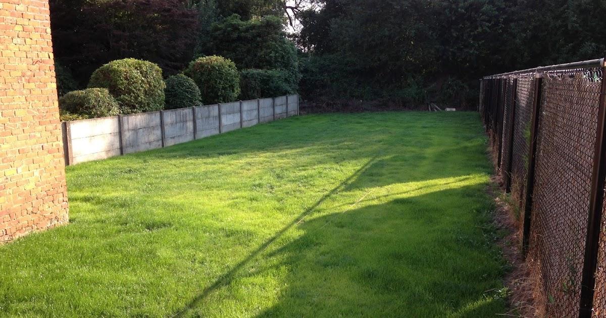 Lotte en jens verbouwen tuin en kalei for Tuin verbouwen