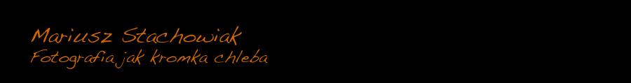 stachowiak