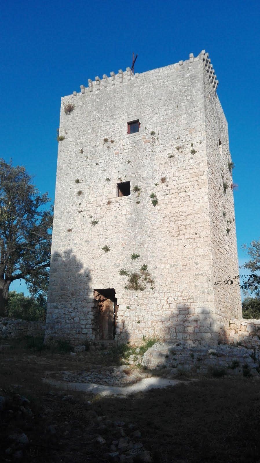 torre di castiglione 2