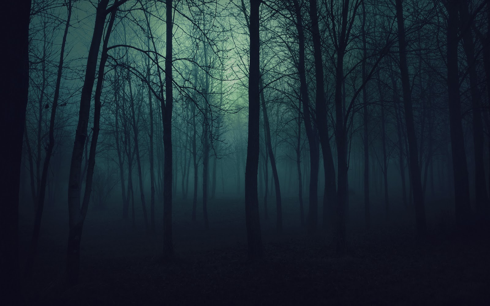 Spooky scene in a creepy night autum in a forrest 2012 free download