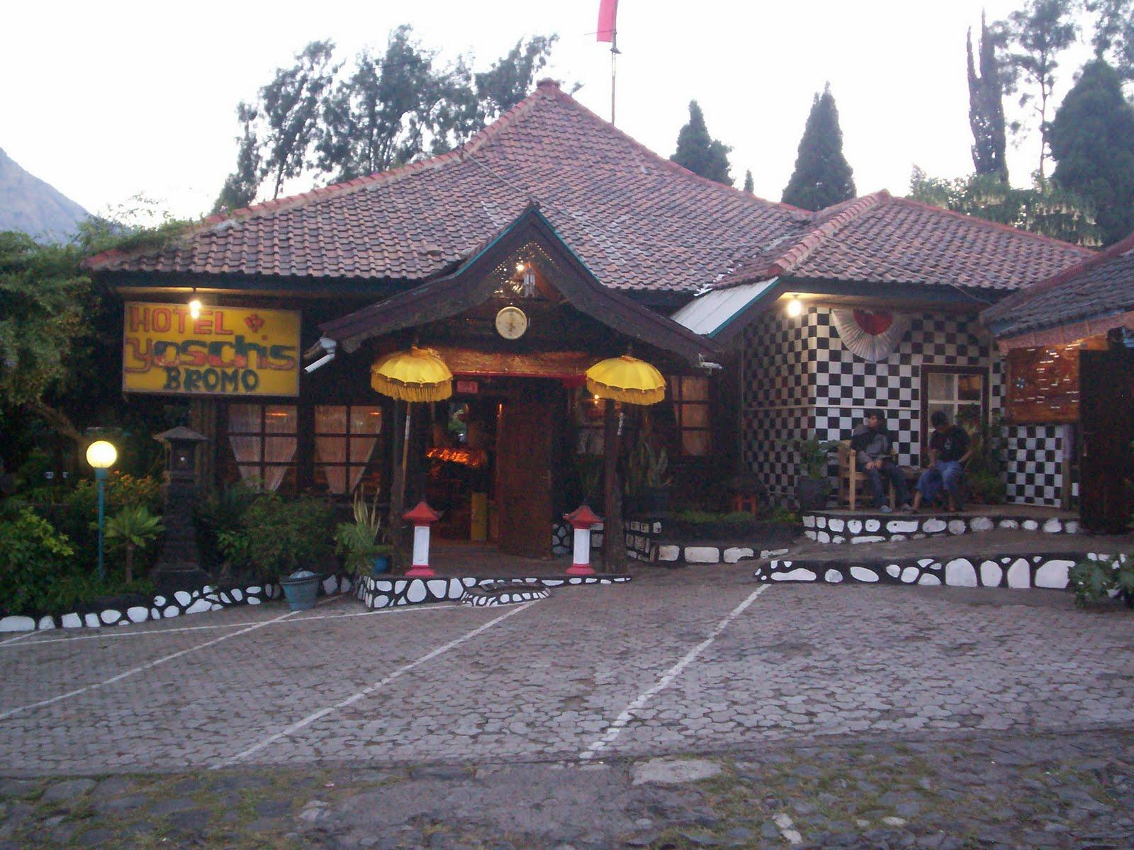 Penginapan Murah di Bromo, Yoschi's Hotel