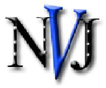 NVJ WEB DEVELOPER LOGO