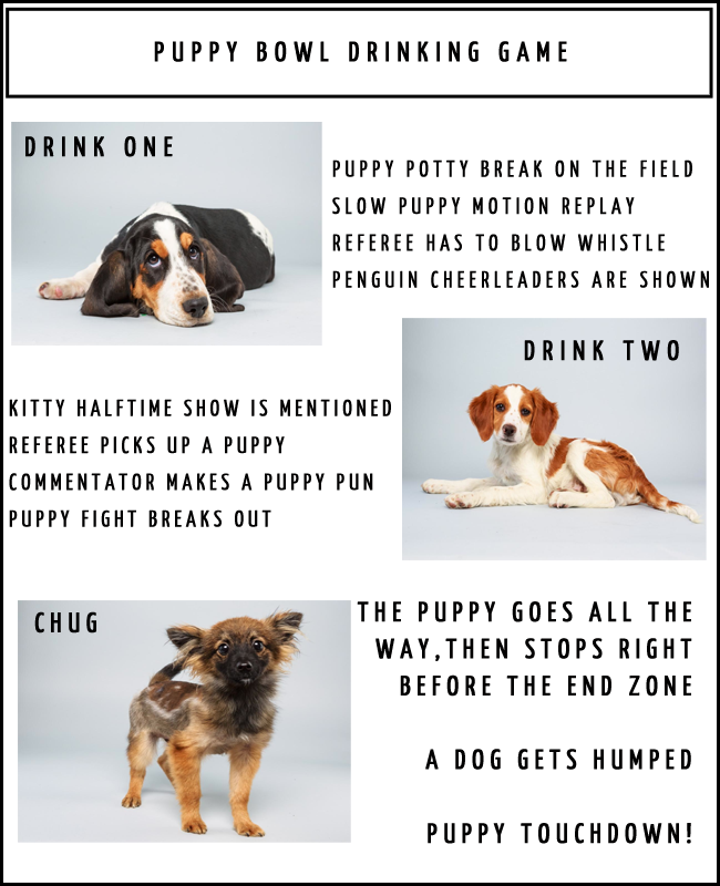 Puppy Bowl Drinking Game 2014