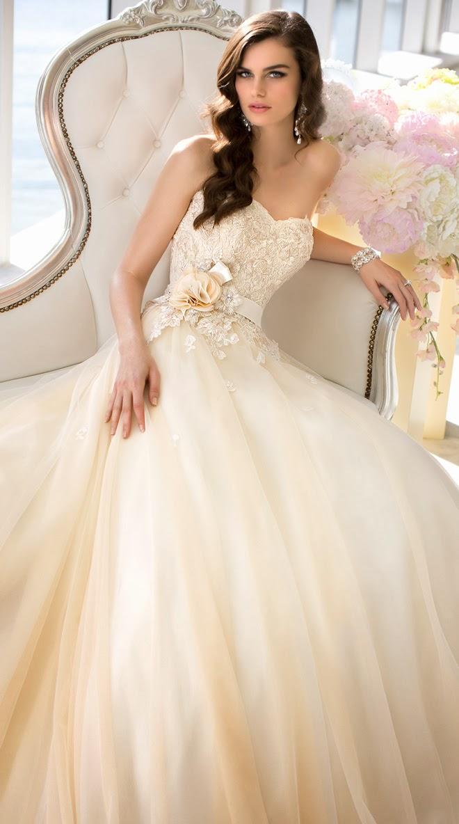 البوم صور فساتين زفاف wedding dress بتصميمات وافكار مميزة