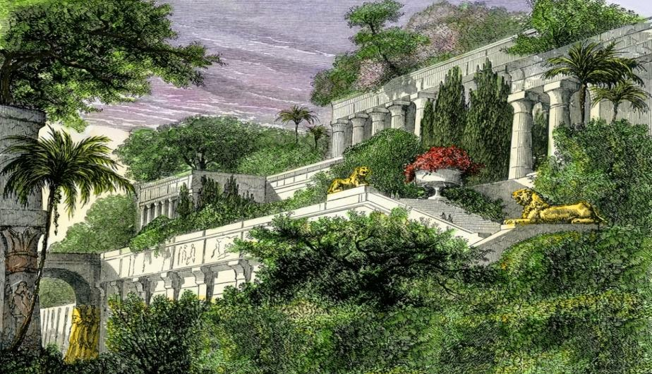 Azoteas verdes historia for Jardines verdes