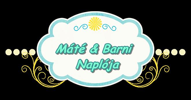 Máté és Barni