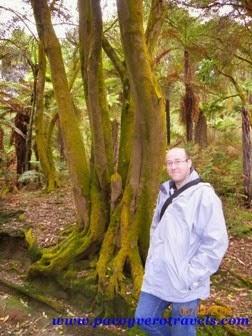 Hell´s Gate y Wai Ora Spa en Rotorua