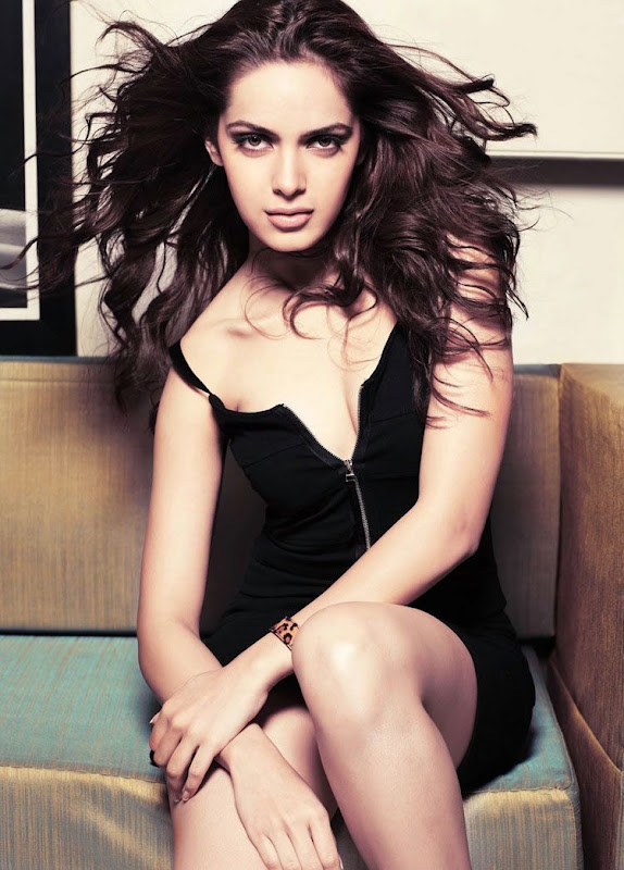 Shazahn Padamsee new latest HQ wallpaper collection  hot photos