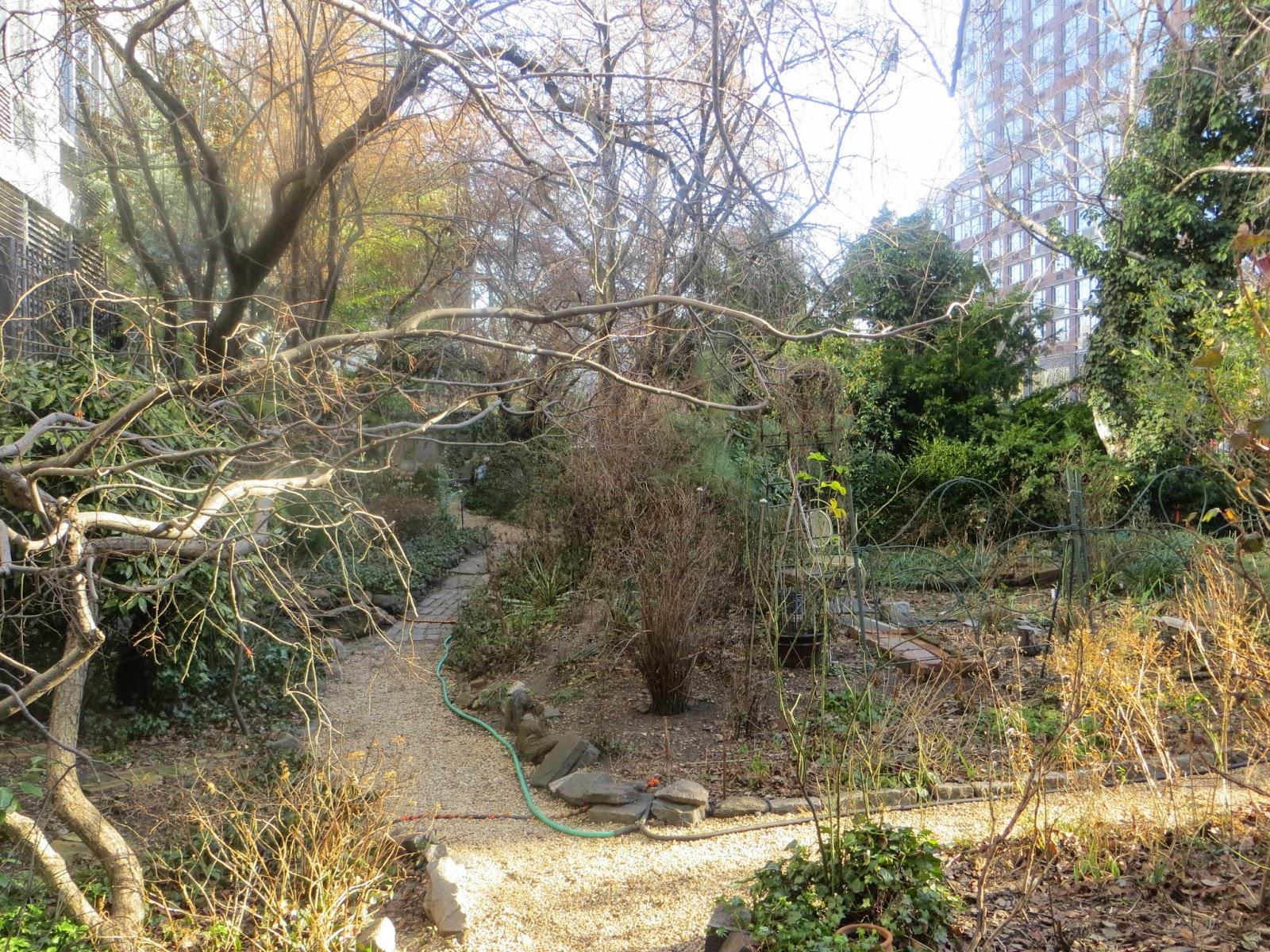 sometimes in winter liz christy community garden nyc