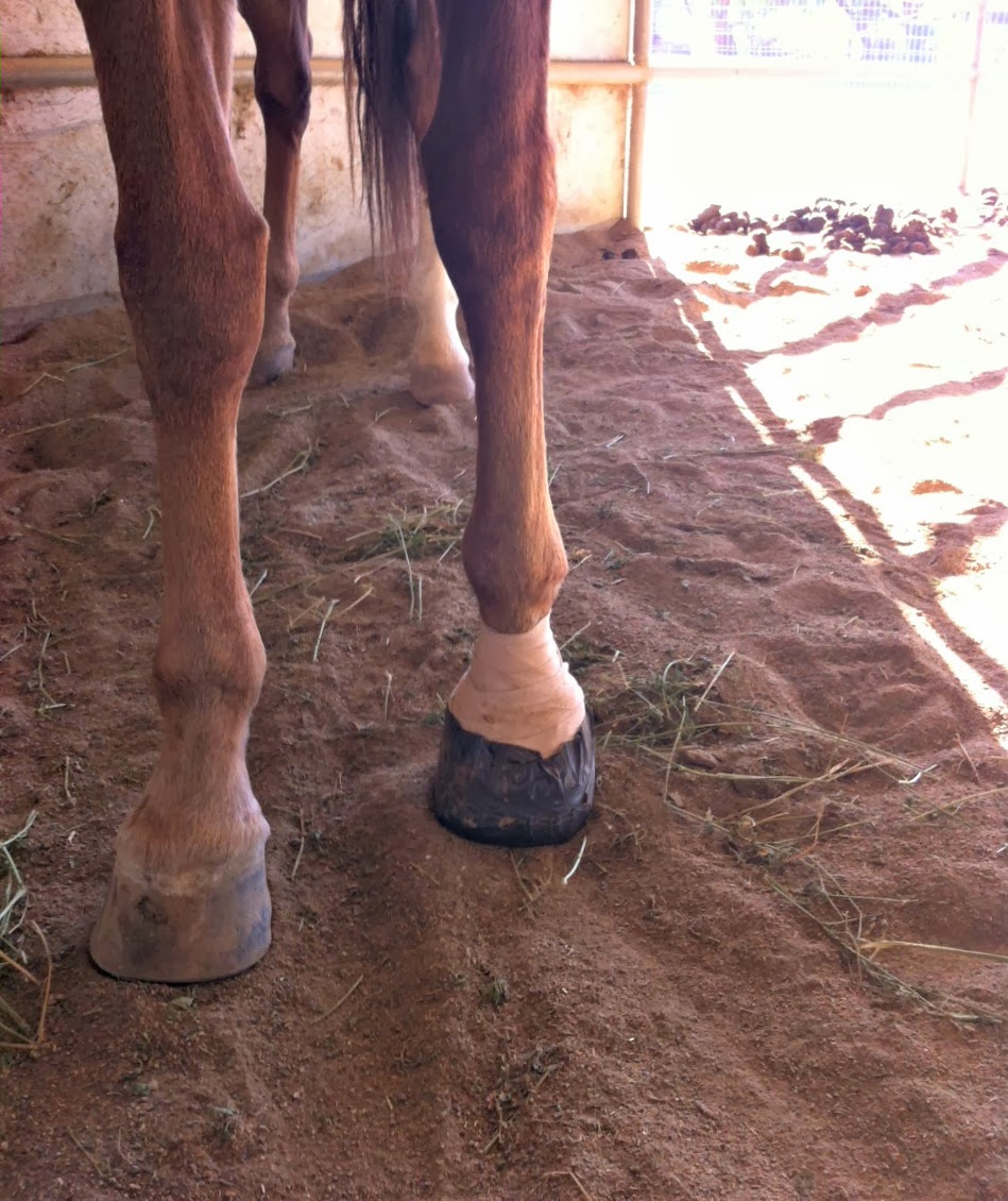 how to avoid getting an abscess from puncture