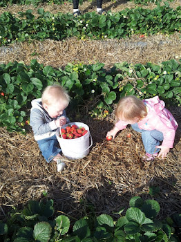 Pickin berries