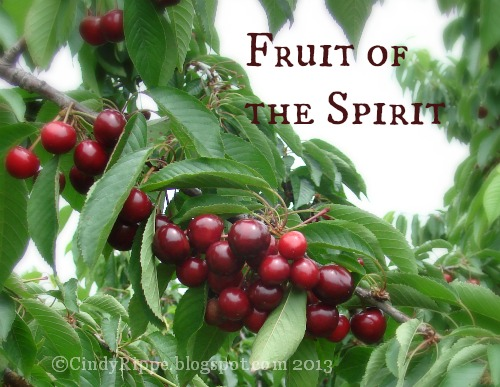 Fruit of the Spirit, Treemendous Fruit Farm, Michigan, Psalm 51:12, Florals-Family-Faith, Cindy Rippe