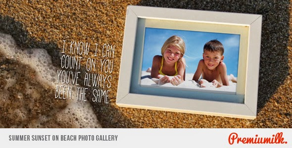 VideoHive Summer Sunset on Beach Photo Gallery