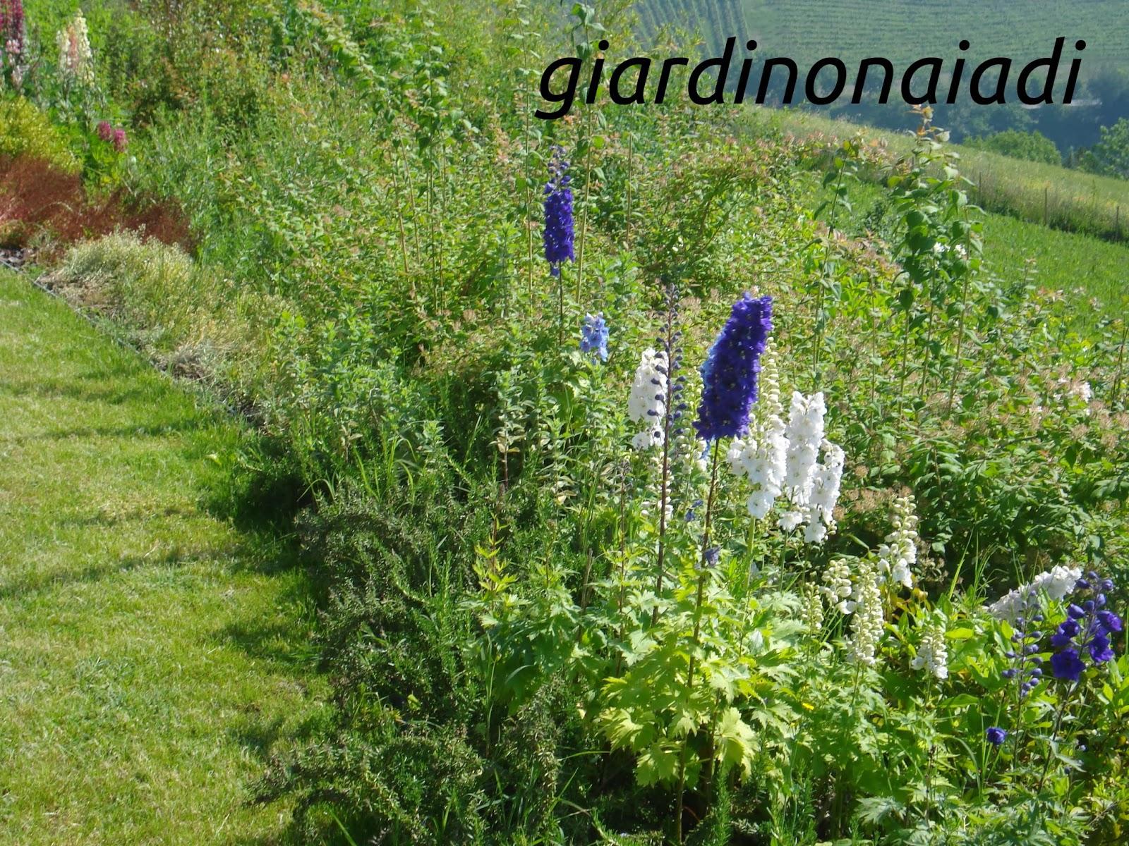 Il giardino delle naiadi lo stile il giardino di campagna - Giardino di campagna ...