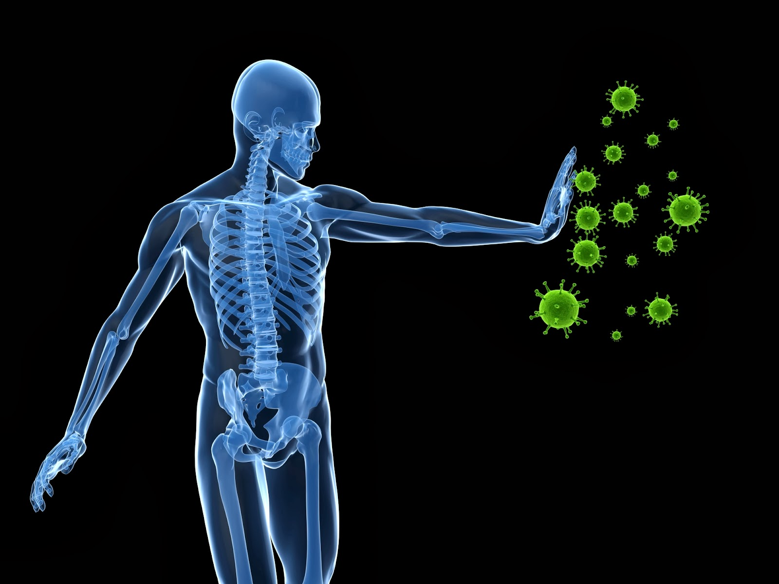 11 Surprising Facts About the Immune System