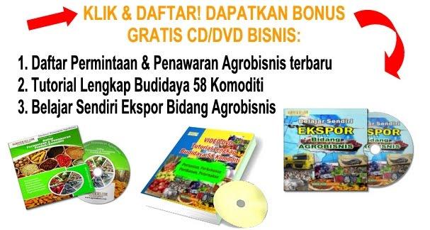 Bonus 3 Sekaligus: