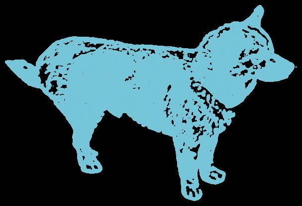 横向きの犬(動物)
