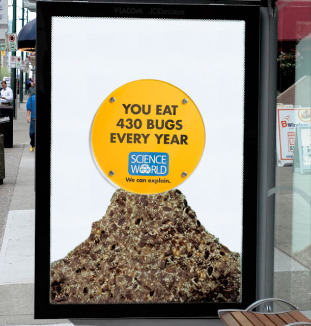 You eat 430 bugs every year