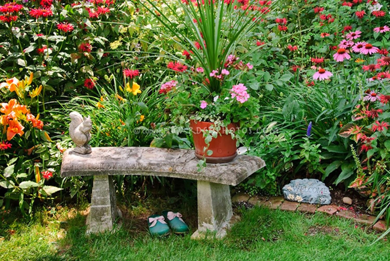 Eliseu antonio gomes dia internacional da mulher 2014 for Avoir un beau jardin