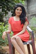 Samyuktha Hornad Glam pics-thumbnail-6