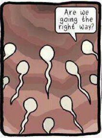 sperm,masturbate,gay,jenna jamesson, maria ozawa, taylor swift, anal sex, porn, ejaculation