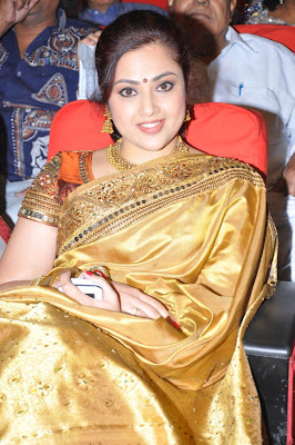 meena in saree hot photoshoot