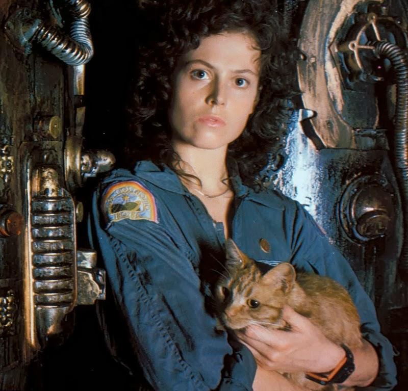 Resultado de imagen para alien el octavo pasajero gato