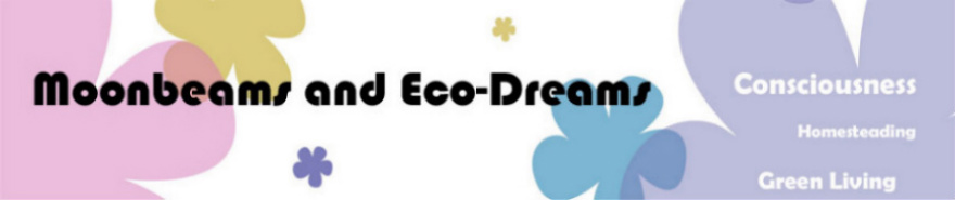 Moonbeams and Eco-Dreams