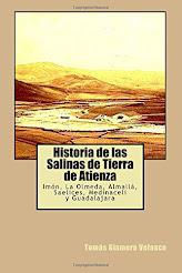 HISTORIA DE LAS SALINAS DE TIERRA DE ATIENZA