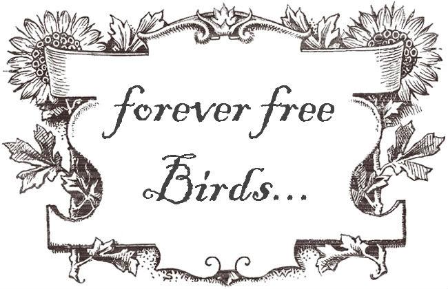 Forever Free Birds...