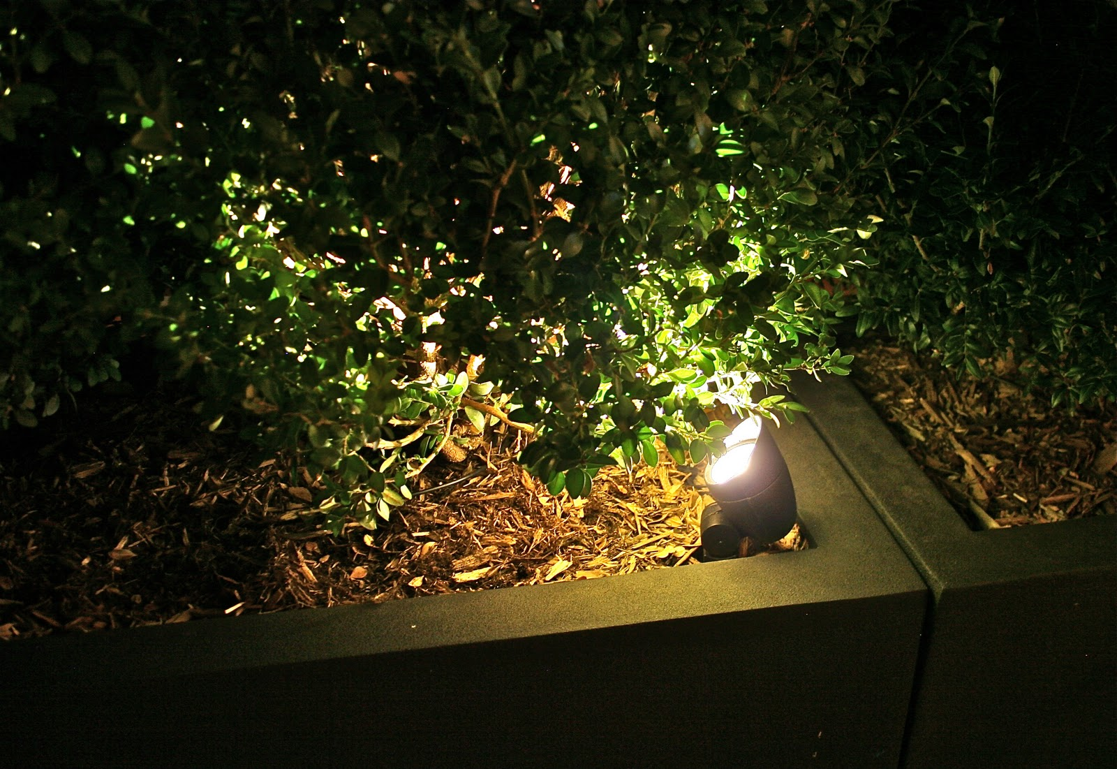 GreenZone Landscape Design LED Lighting Is Perfect For Small