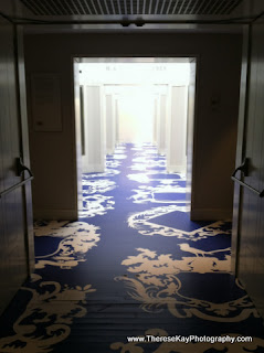 photograph of hallway lit by window light with blue graphic carpet
