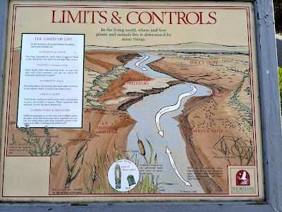Limits & Controls